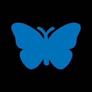 Butterfly_lg